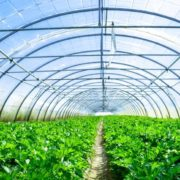 Система подогрева земельного грунта для теплиц